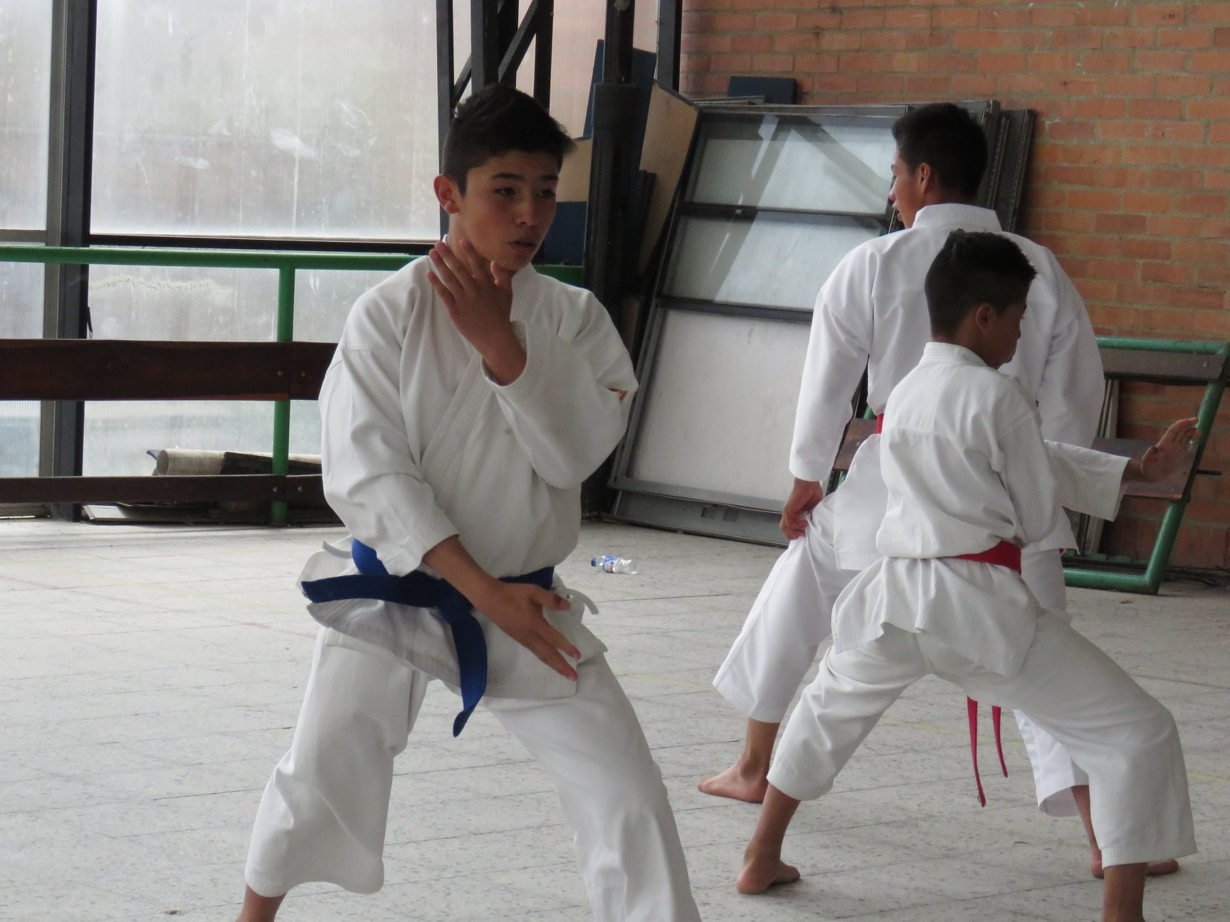 KARATE INTERCOLEGIADOS4
